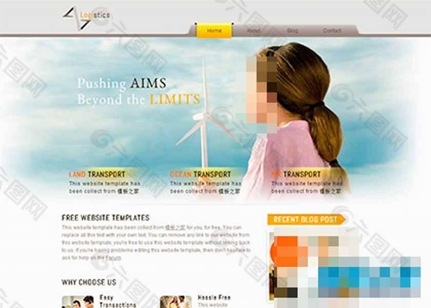 商务调查网站
