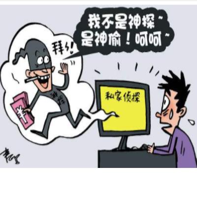 上海调查公司